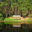 Beautiful countryside wooden house on the lake in a pine forest. Place of rest and fishing — Stock Photo #12718113