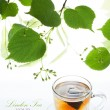 Linden tea bag in a glass cup and twig lime frame — Stockfoto