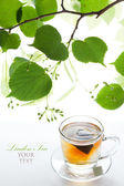 Linden tea bag in a glass cup and twig lime frame — Stock Photo