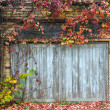 Stock Photo: Old wooden door with a brick wall and creepers