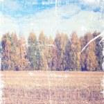 Vintage autumn countryside — Stock Photo