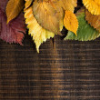 Autumn background. Leaves border on dark wood — Stock Photo #13374087