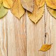 Autumn background. Leaves border on wood — Stock Photo