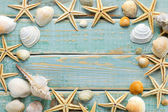 Sea shells frame on vintage shabby wood — Stock Photo