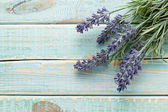 Flowers on vintage wood background — Stock Photo
