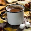 Mug of Cocoa — Stock Photo