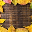 Stock Photo: Autumn Leaves frame on dark wood background
