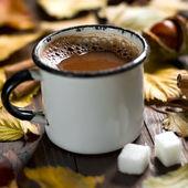 Mug of Cocoa — Stock Photo