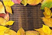 Marco las hojas de otoño sobre fondo oscuro de madera — Foto de Stock