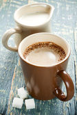 Cocoa with milk — Stock Photo