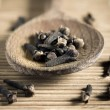 Clove spice — Stock Photo #16916837