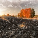 paysage enneigé — Photo