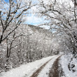 Winter road — Stock Photo #18366307
