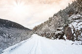 Zimní cesta — Stock fotografie