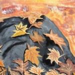las hojas de otoño sobre roca — Foto de Stock   #24772051