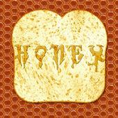 Honey and toast — Stock Photo