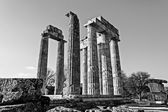 Black and White Ancient Temple of Zeus in the Nemea — Foto de Stock