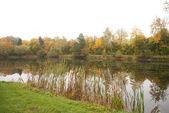 Jesień - jezioro — Zdjęcie stockowe