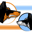 Stock Vector: Doberman Guard Dog
