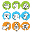 Dog Faces Collection — Stock Vector #22411901
