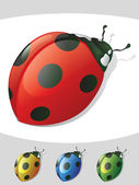 Lady Bug Isolated Objects — Stock Vector