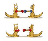 Boxing Kagaroo — Stock Vector