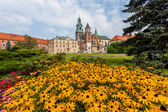 Wawel - Cracow — Stock Photo