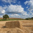 Harvested haystack in a field. — Stock Photo