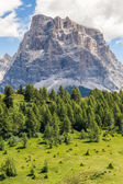 Summer in the Dolomites - Italy — Stock Photo