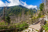 Beautiful trail in the Tatra Mountains — Zdjęcie stockowe
