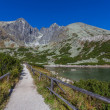 The Tatra Mountains — Stock Photo #32752977