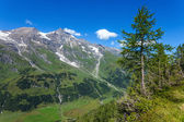 Hohe Tauern National Park - Austria — Stock Photo