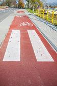 Bike path alongside the road — Stock Photo