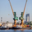Industrial view - port of Gdynia, Poland — Stock Photo