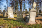 Historic Mennonite cemetery (18th century) - Poland — Stock Photo