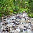 Tatra Mountains - a stream of pure water — Stock Photo