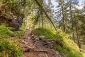 Beautiful, a breathtaking view - Dolomites, Italy — Stock Photo