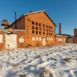 The ruins of the brick factory - Poland — Stock Photo #39699419