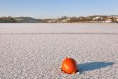 Donmuş gölde mahsur şamandıra — Stok fotoğraf