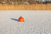 Buoy trapped in the frozen lake — Stock fotografie