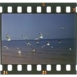 Grunge film frame, ocean view — Stock Photo #12412532