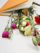 Carnations in the book — Stock Photo