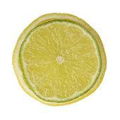 Single cross section of lemonand lime — Stock Photo