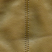 Brown leather textured background, stitch — Stock Photo