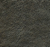 Black leather texture closeup. — Stock Photo