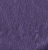 Violet leather textured background — Stock Photo