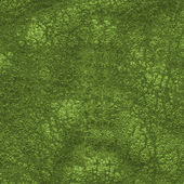 Green  worn old leather texture   — Stock Photo