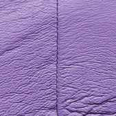 Leather texture, stitch — Stock Photo
