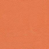 Textura de piel — Foto de Stock