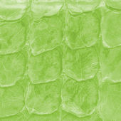 Reptile skin ,green background — Photo